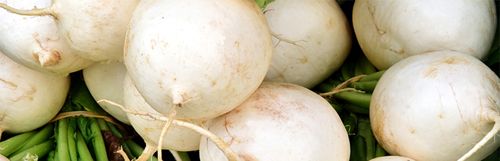 Could Radishes Aid Cardiovascular Progress?