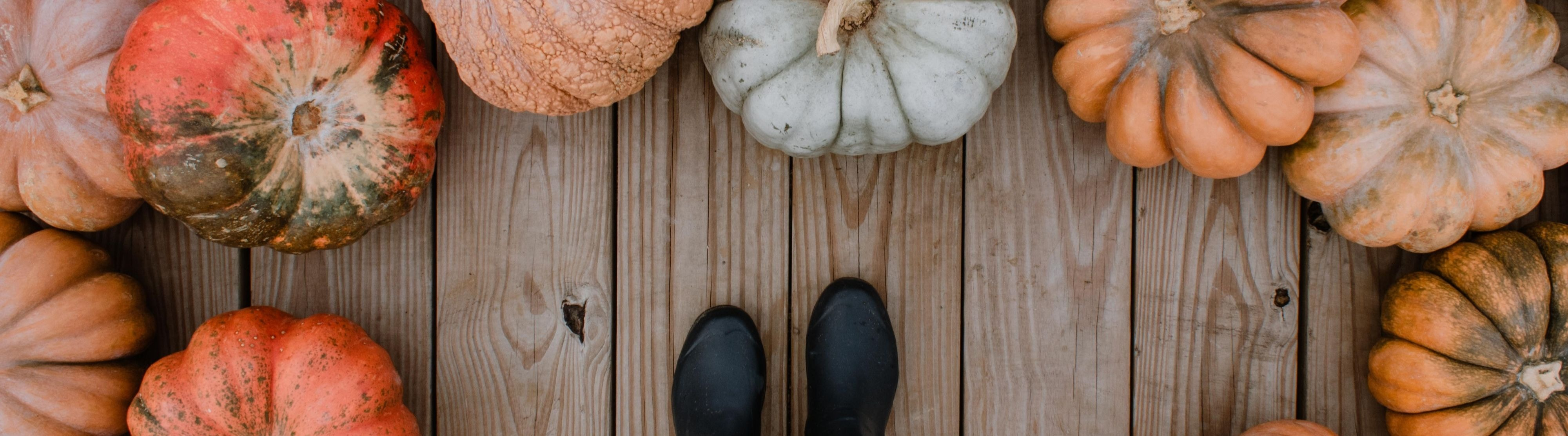 Why You Should Add More Pumpkin into Your Diet